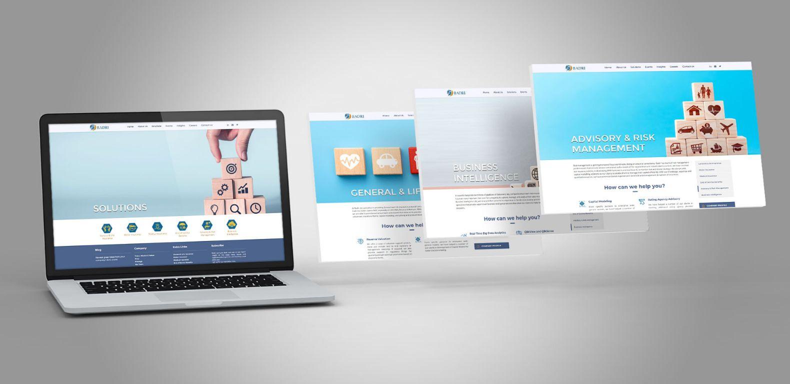 Badri-Consultancy-website-design-development-Services-page