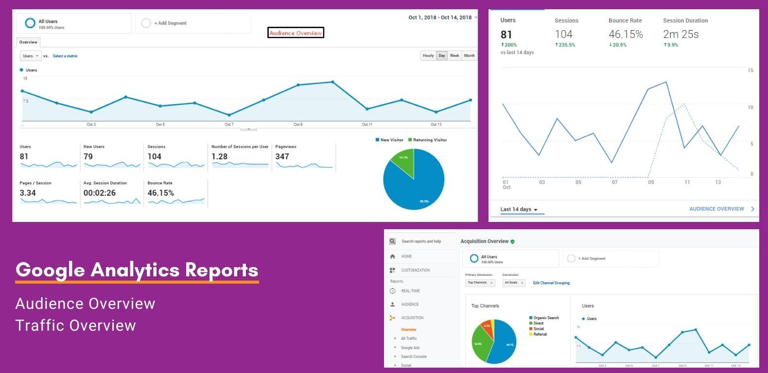 SEO-Nilvac-Enterprises-Reports